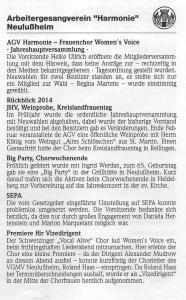 Lußheimer Nachrichten 28.02.2015